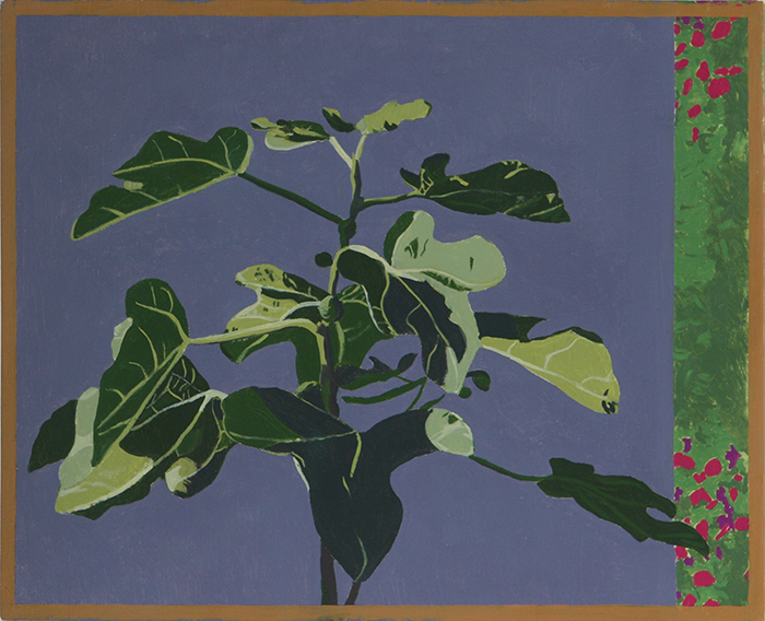 Top of the Fig Tree (Oil on Primed Paper, 182mm x 224mm, 2010)