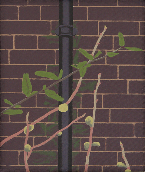 Winter Figs (Oil on Canvas, 179mm x 150mm, 2010)