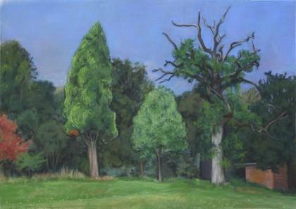 Fosbury Trees (Soft Pastel on Paper, 660mm x 932mm, 2016)